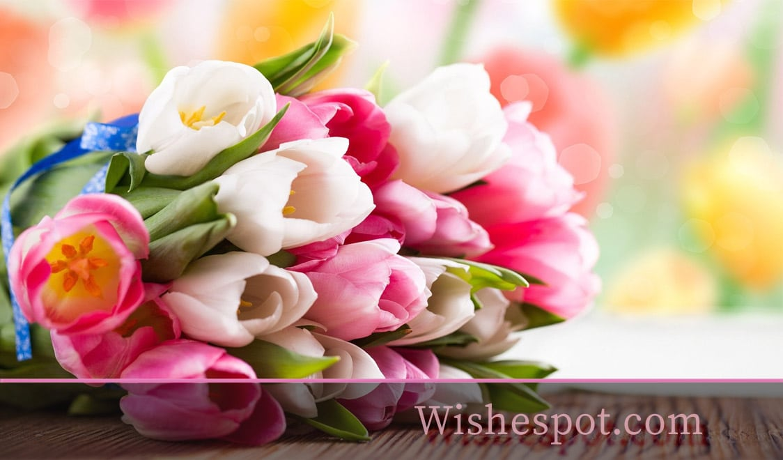 Good Luck Wishes-wishespot
