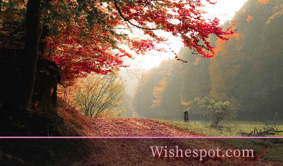 fall season quotes -wishespot