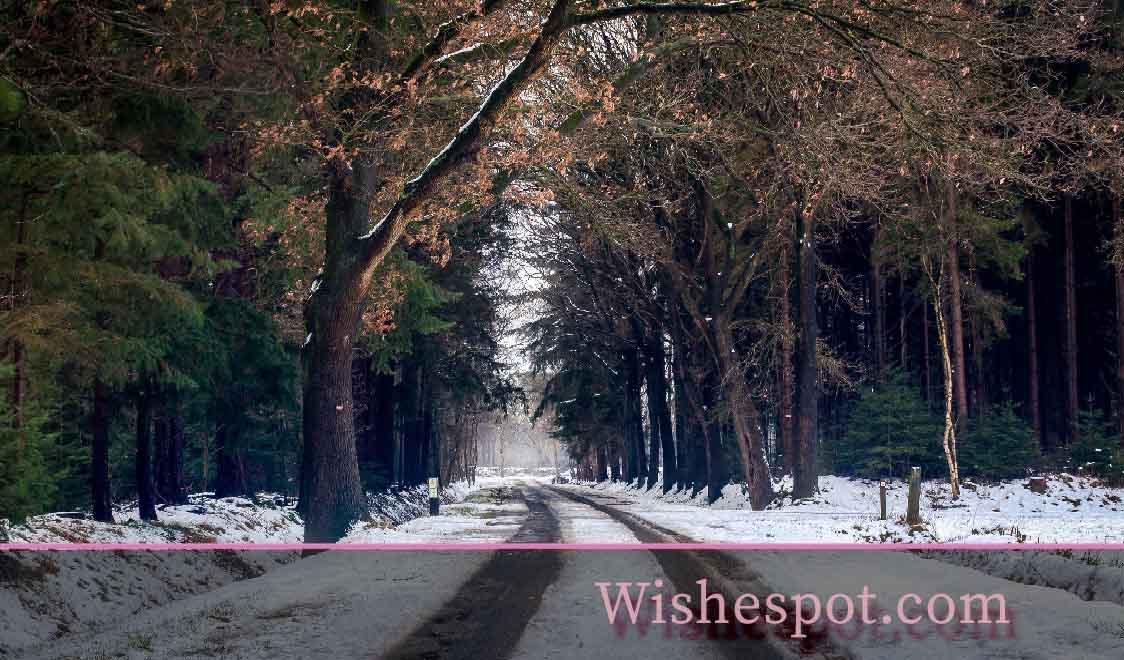 winter season quotes -wishespot