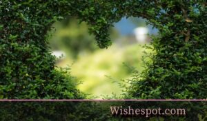 deep-love-poems-wishespot